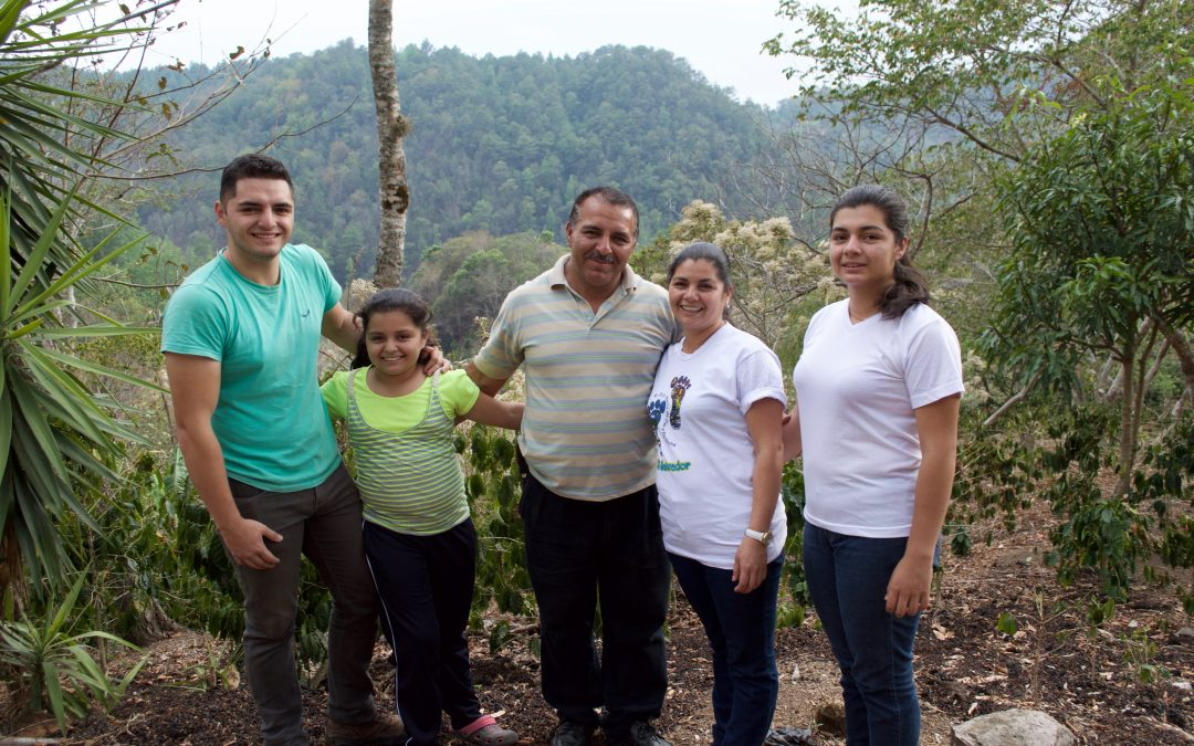 ICP Projects in Central America: Farmers' Crops, Income, Families