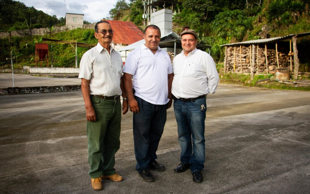 How Coffee Producers Benefit through ICP from a Focus on Quality