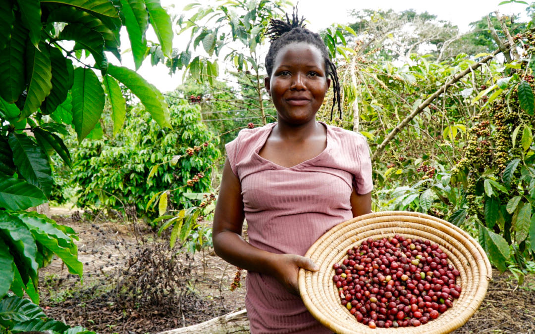 Alleviating the impact of COVID-19 on farmers in Uganda and Tanzania