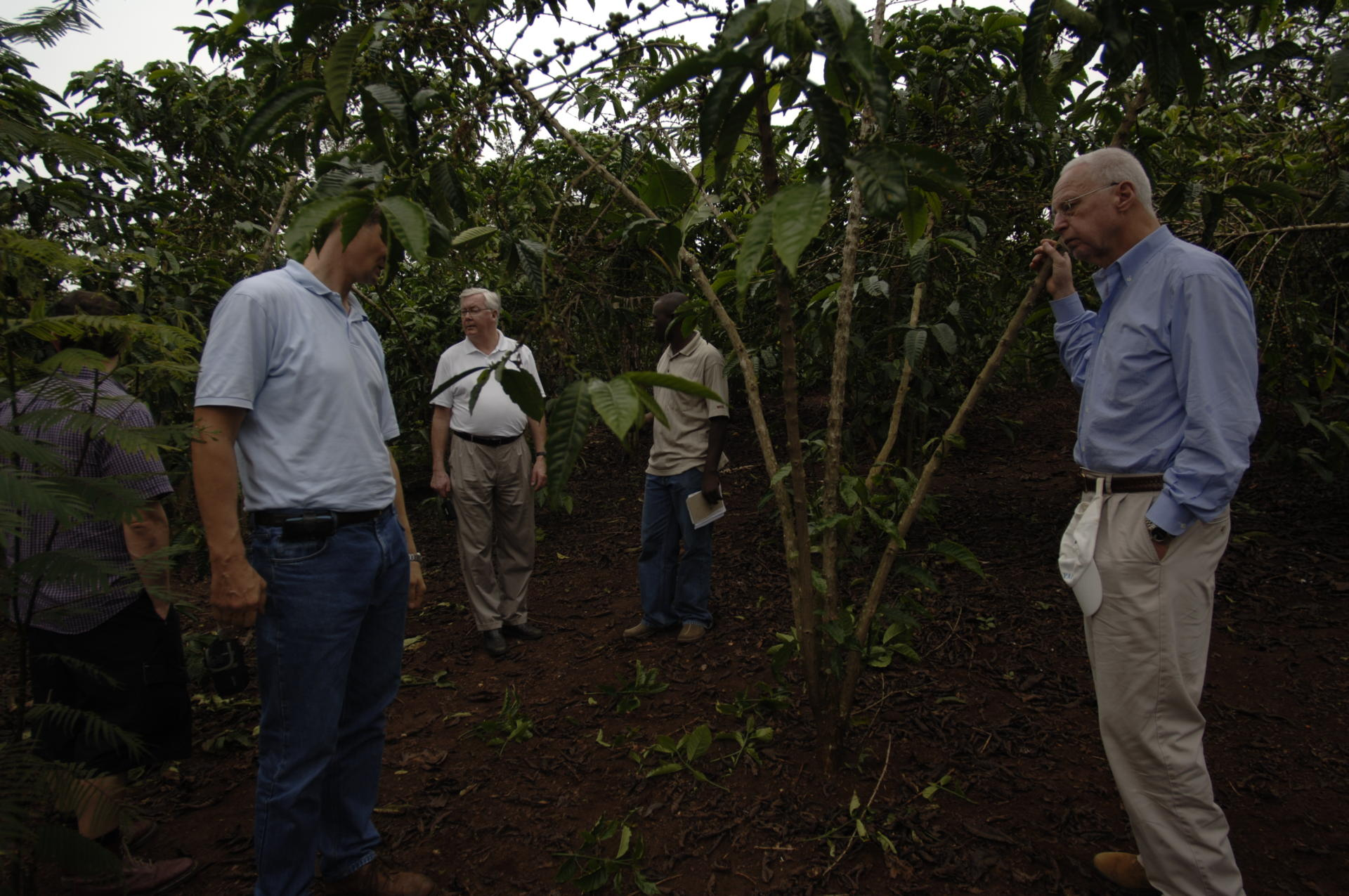 Exchanging knowledge on coffee production with coffee farmers in Uganda