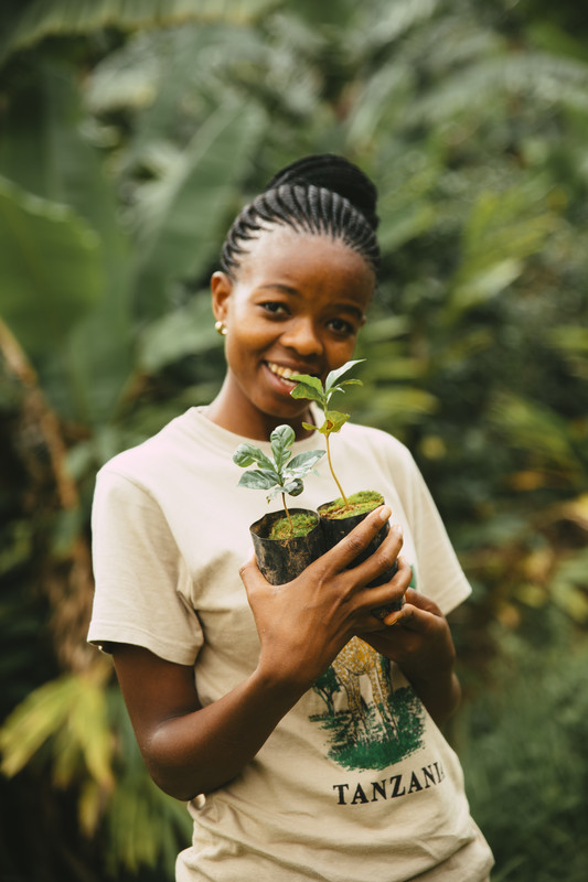 Woman holding young coffee tree