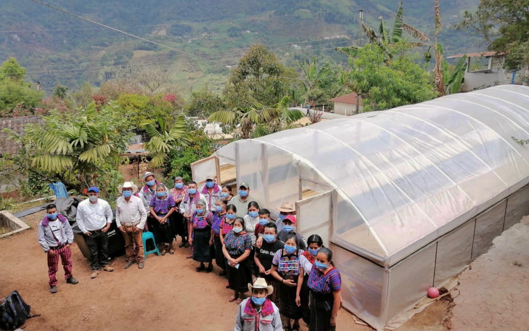 ICP supports 2,400 smallholder families after Hurricanes Iota and Eta