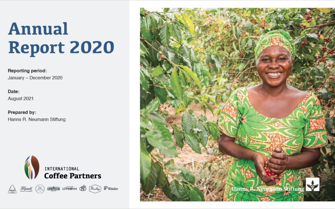 ICP releases Annual Report 2020